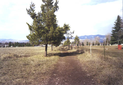Walking trail in Missoula